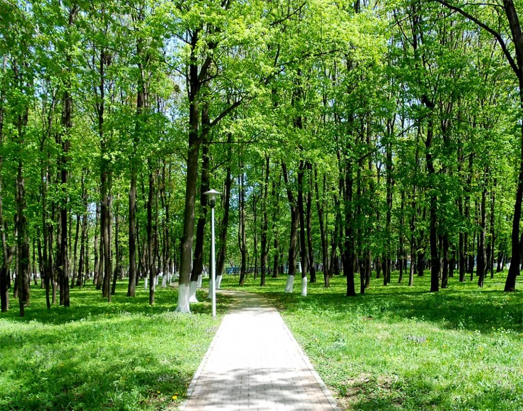 parc-roman